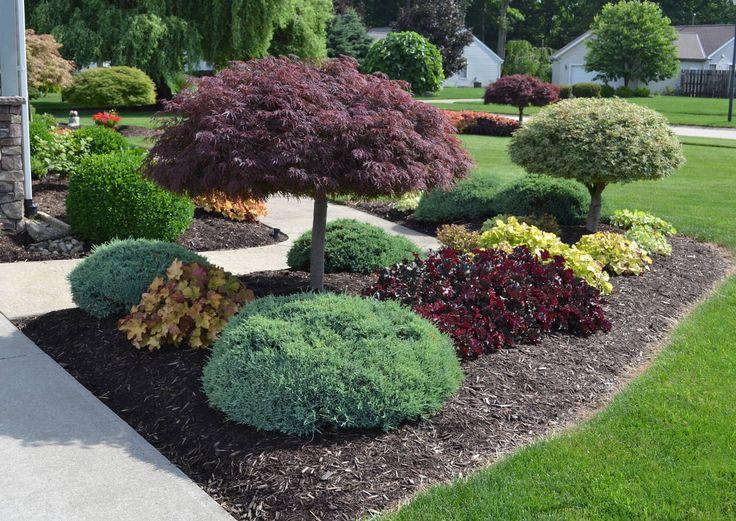 Backyard Garden Latest Idea