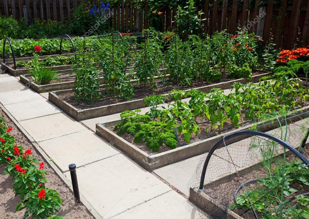 Backyard Garden Modern Idea