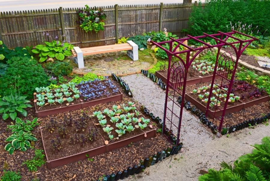 Backyard Garden New Idea
