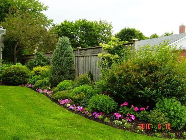 Best Backyard Garden