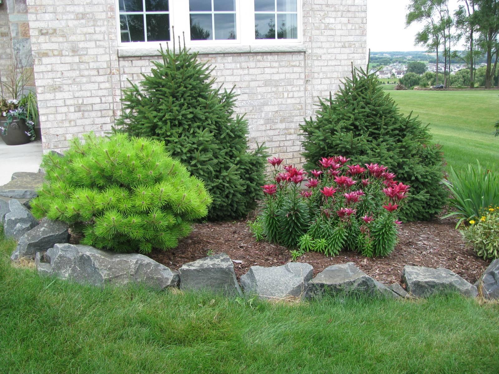 Best Backyard Garden Idea