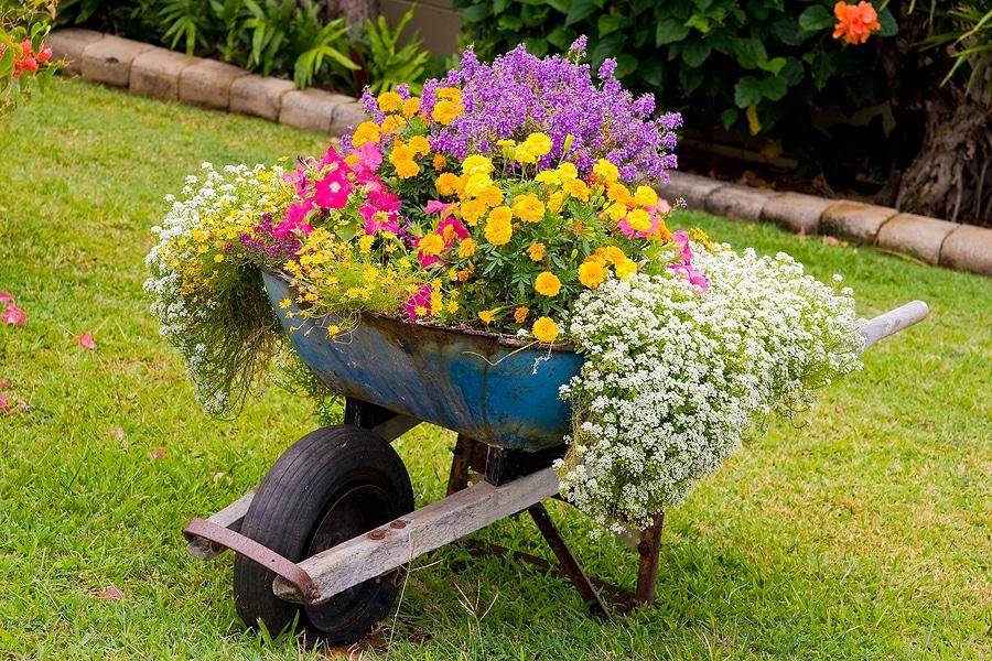 Best Garden Container