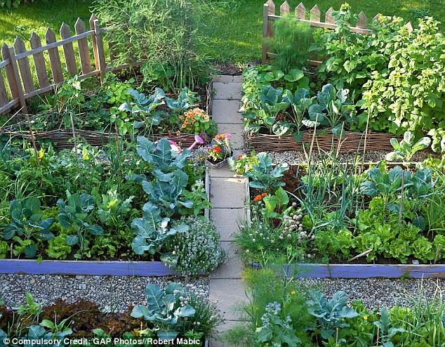 Best Garden Layout