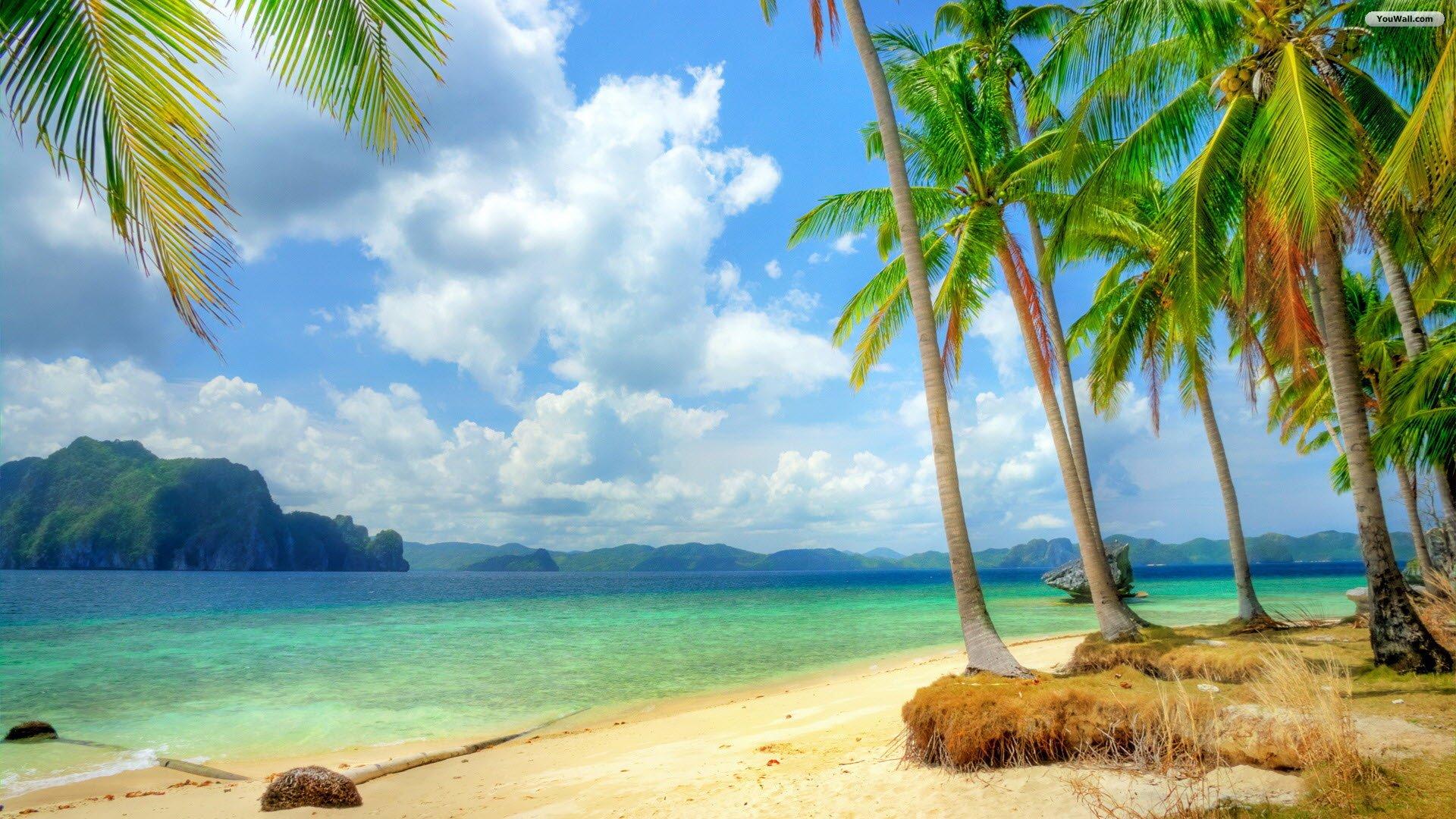 Best Tropical Landscape