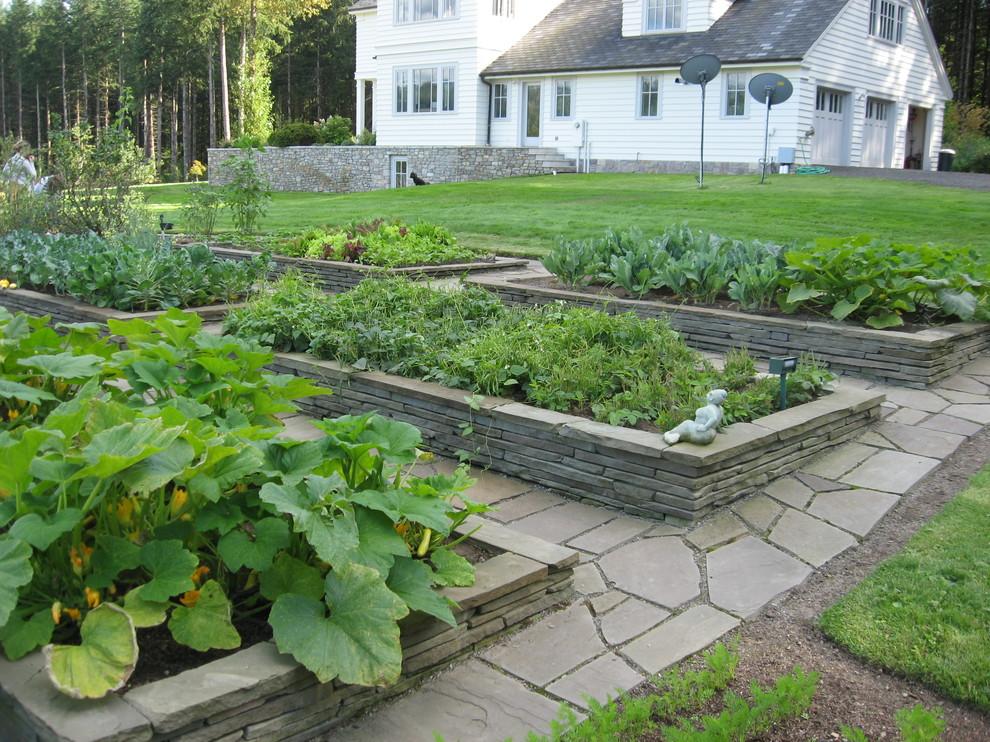Download Backyard Garden Idea