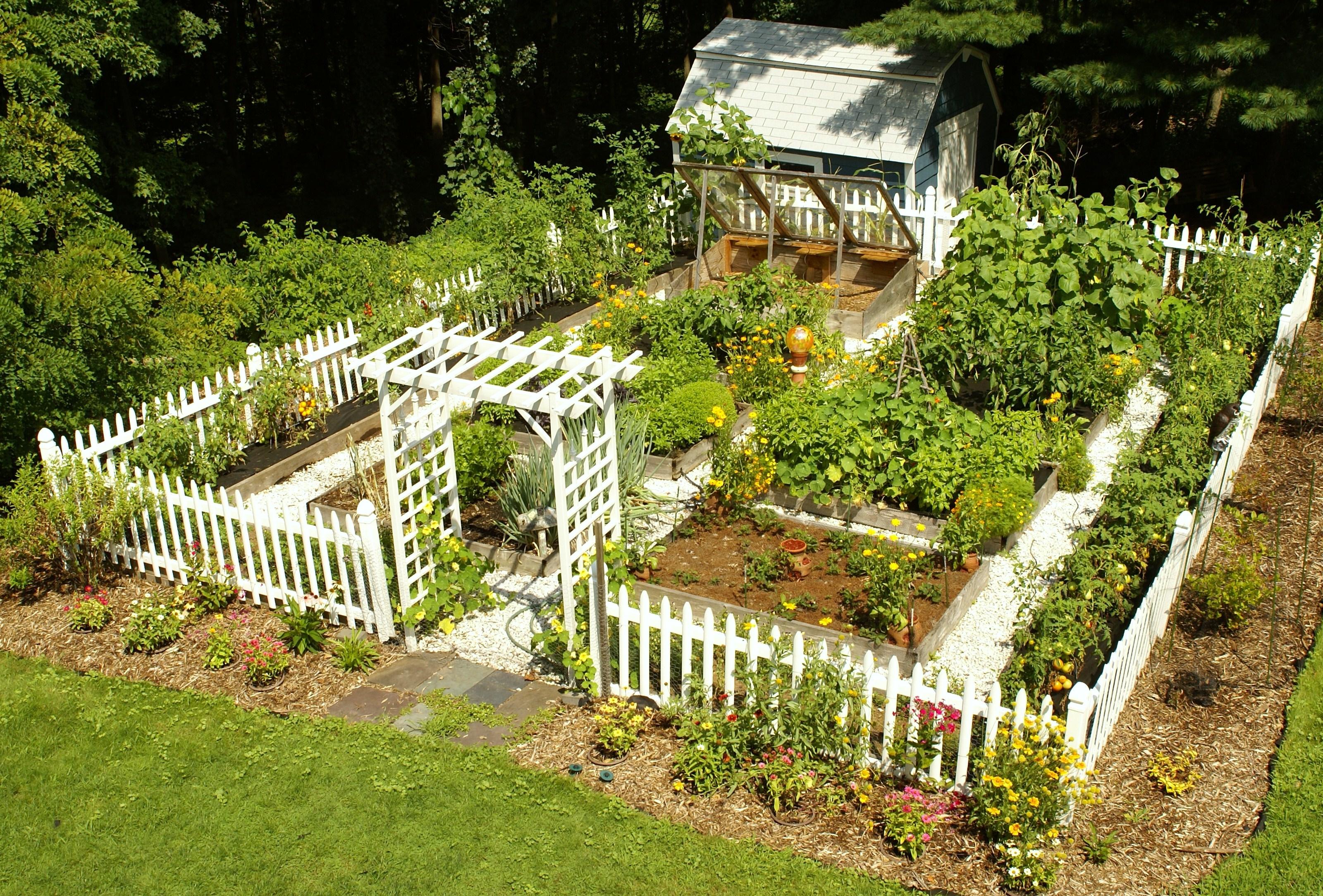 Download Vegetable Garden Idea
