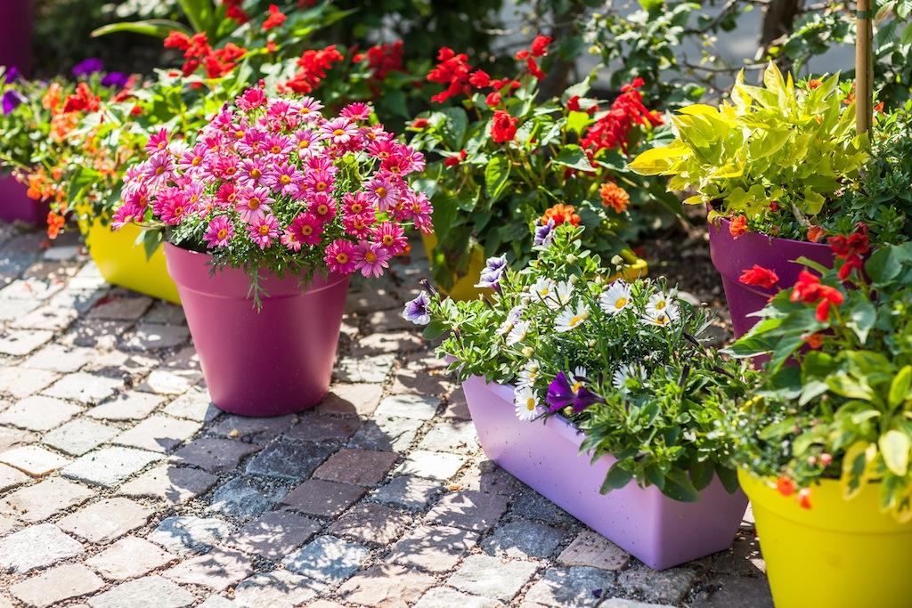 Garden Container Design