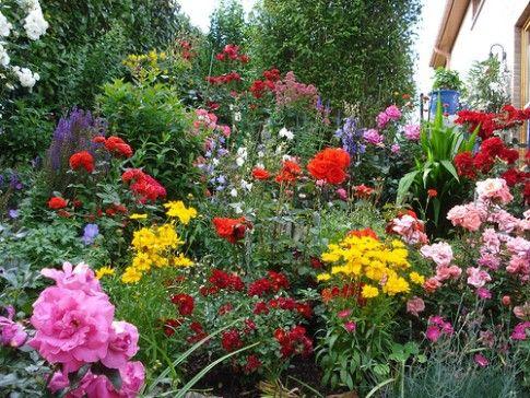Garden Flowers Picture