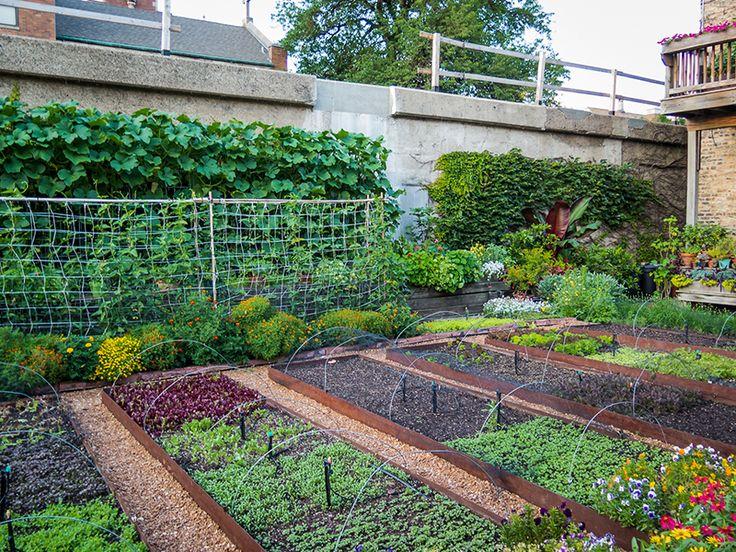 Garden Layout Image