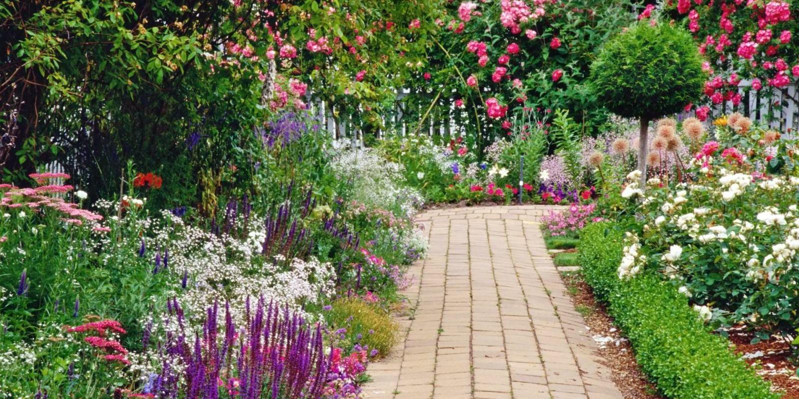Garden Path Picture