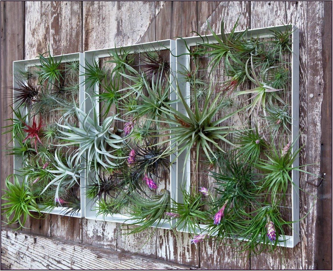 Garden Wall Decor