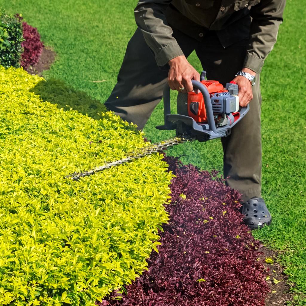 Landscape Maintenance Image