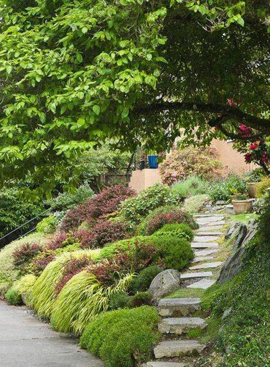 Japanese Garden Image