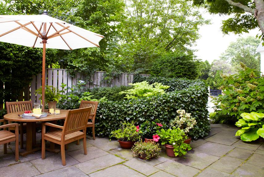 Landscape Garden Latest Idea
