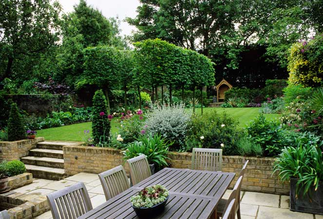 Latest Backyard Garden