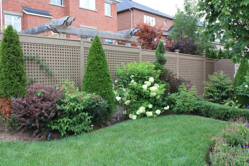 Latest Backyard Garden Idea