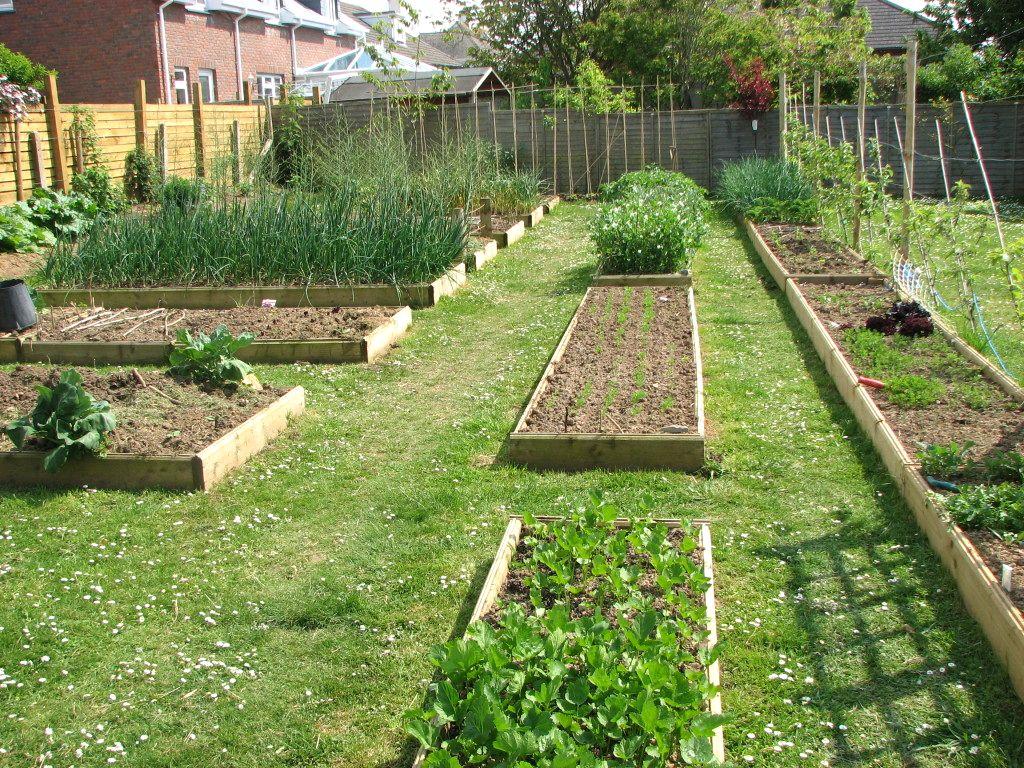 Latest Garden Layout