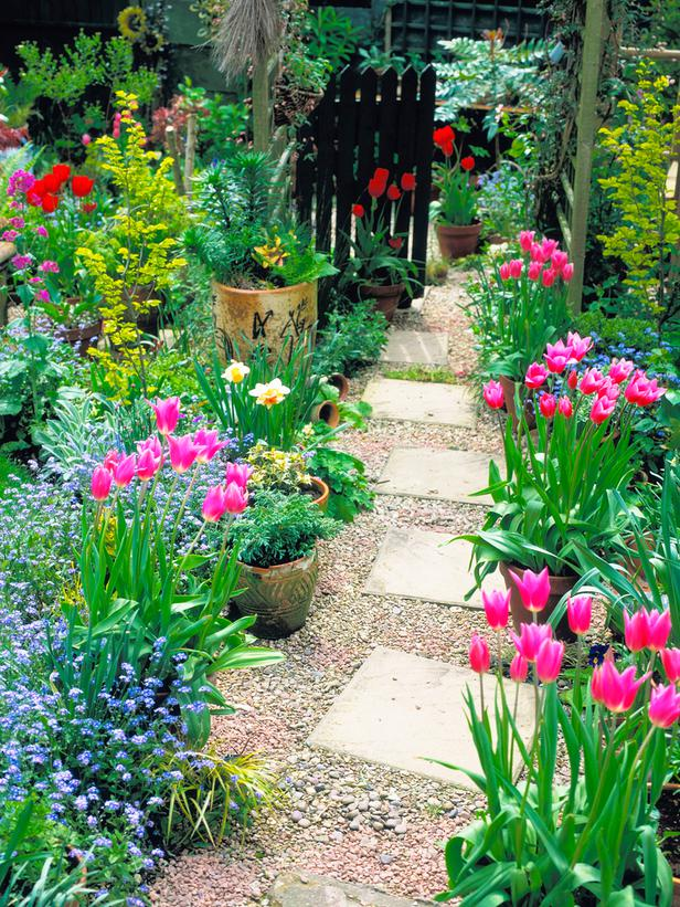 Latest Garden Path