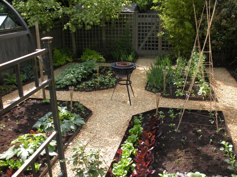Latest Vegetable Garden Idea
