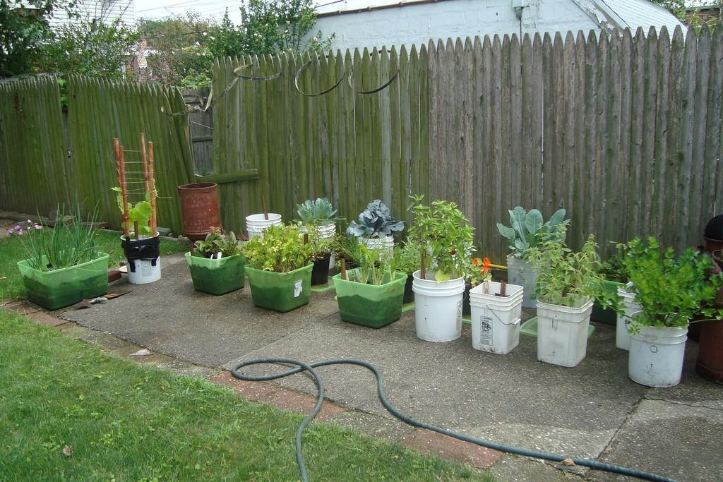 New Garden Container