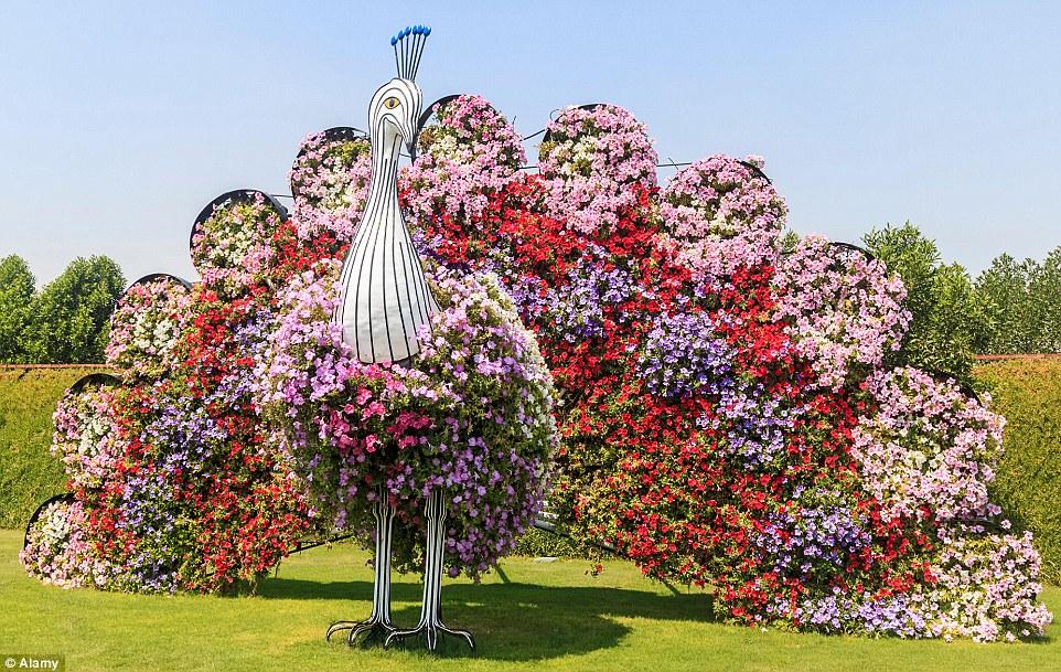 Online Flower Garden Image