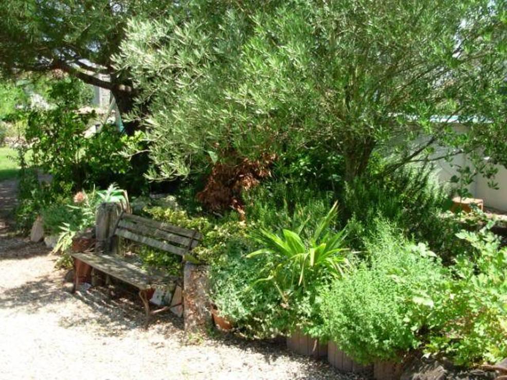 Online Herb Garden Design