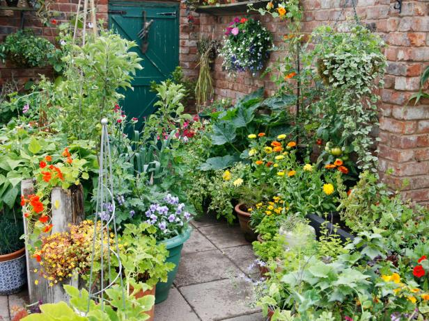 Patio Garden Photo