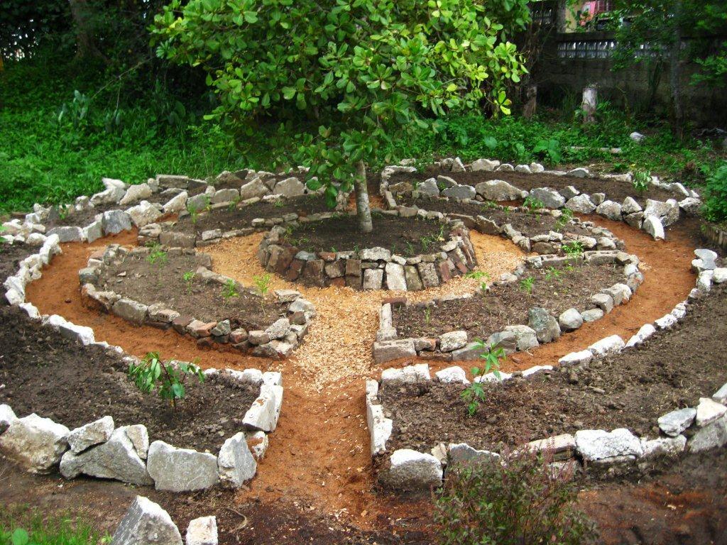Simple Vegetable Garden Idea