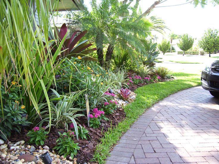 Tropical Landscape Idea