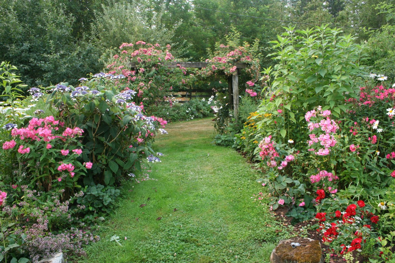 Unique Garden Path