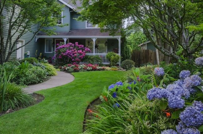 Yard Landscaping Idea